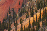 Colorado, San Juan Mts, Colorful Slopes of Anvil Mountain Photographic Print by David Wall