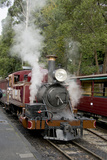 Australia, Dandenong Ranges. Puffing Billy, Vintage Steam Train Fotodruck von Cindy Miller Hopkins