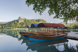 Slovenia, Bled, Lake Bled, Plenta Boats Photographic Print by Rob Tilley