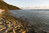 Fregate Island, Seychelles Photographic Print by Sergio Pitamitz