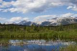 Jasper National Park, Canadian Rockies Photographic Print by Ken Archer