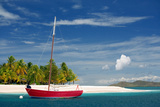 Palm Island, Grenadines, West Indies Photographic Print by Susan Degginger
