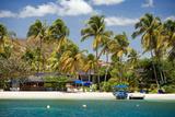 Prickly Bay, Grenada, West Indies Photographic Print by Susan Degginger