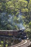 Australia, Victoria, Belgrave, Puffing Billy Steam Train Photographic Print by Walter Bibikow