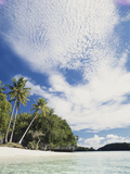 Palau, Honeymoon Island, Rock Islands, View of Beach with Palm Trees Photographic Print by Stuart Westmorland