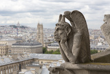 Europe, France, Paris. a Gargoyle on the Notre Dame Cathedral Photographic Print by Charles Sleicher