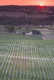 Australia, Clare Valley, Clare, Elevated View of Vineyards Photographic Print by Walter Bibikow