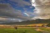 Barn Along Indian Creek and the Whitefish Range, Eureka, Montana Photographic Print by Chuck Haney