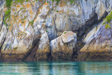 Alaska, Glacier Bay National Park. Cliff Reflects in Seawater Photographic Print by Jaynes Gallery