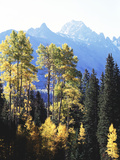 California, Sierra Nevada, Inyo Nf, Autumn Aspens Below Mountain Peak Photographic Print by Christopher Talbot Frank
