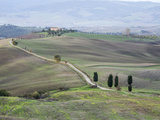 Europe, Italy, Tuscany. Tuscan Landscape in Autumn Photographic Print by Julie Eggers