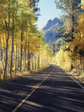 California, Sierra Nevada, Inyo Nf, a Road Through Aspens Photographic Print by Christopher Talbot Frank