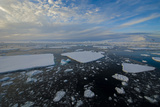 Antarctica, Near Adelaide Island. the Gullet. Ice Floes and Brash Ice Photographic Print by Inger Hogstrom