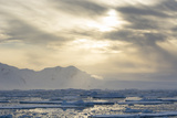 Antarctica. Near Adelaide Island. the Gullet. Ice Floes at Sunset Photographic Print by Inger Hogstrom