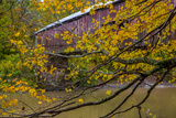 Cox Ford Covered Bridge over Sugar Creek in Parke County, Indiana Photographic Print by Chuck Haney