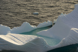 Antarctica. Gerlache Strait. Orne Harbor. Iceberg with Suncups Photographic Print by Inger Hogstrom