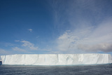 Antarctica. Antarctic Sound. Giant Tabular Iceberg Photographic Print by Inger Hogstrom