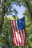 Colorado, Crawford. Flag Hanging Between Two Trees Photographic Print by Jaynes Gallery