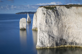 White Cliff and Harry Rock, Studland, Isle of Purbeck, Dorset, England Photographic Print by Brian Jannsen
