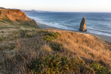 Needle Rock at Cape Blanco State Park, Oregon, USA Photographic Print by Chuck Haney