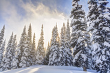 Crystal Mountain Ski Resort, Near Mt. Rainier, Wa, USA Photographic Print by Stuart Westmorland