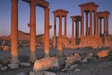 Syria, the Great Tetra Pylon at Palmyra Photographic Print by Steve Roxbury