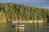 Wa State Ferry View Near Orcas Island, San Juan Islands, Wa Photographic Print by Stuart Westmorland