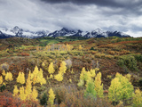 Colorado, San Juan Mountains, a Storm over Aspens at the Dallas Divide Photographic Print by Christopher Talbot Frank