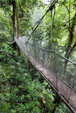 Suspension Bridge, Rainmaker Conservation Project, Costa Rica Photographic Print by Susan Degginger
