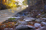 Mccormick Creek Sp Canyon in Early Morning Sun, Spencer, Indiana Photographic Print by Rona Schwarz