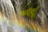 Rainbow, Narada Falls, Mount Rainier National Park, Washington, USA Photographic Print by Michel Hersen