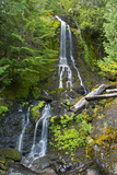 Falls Creek Falls, Mount Rainier National Park, Washington, USA Photographic Print by Michel Hersen