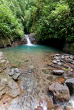 Swimming Hole, Rainmaker Conservation Project, Costa Rica Photographic Print by Susan Degginger