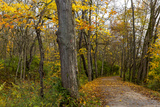 Towpath Trail in Autumn in Cuyahoga National Park, Ohio, USA Photographic Print by Chuck Haney