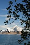 Australia, Sydney. View of the Sydney Opera House and Harbor Bridge Reproduction photographique par Cindy Miller Hopkins