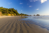 Indian Beach at Ecola State Park Near Cannon Beach, Oregon, USA Photographic Print by Chuck Haney