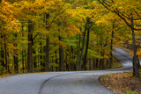 Roadway in Autumn in Brown County State Park, Indiana, USA Photographic Print by Chuck Haney