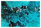 Rust Ocean IV Prints by Jean-François Dupuis