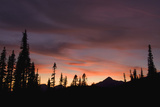 Mount Rainier National Park, Sunset Photographic Print by Ken Archer