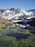 California, Sierra Nevada, Twenty Lakes Basin, a Tarn in a Meadow Photographic Print by Christopher Talbot Frank