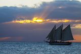 Sunset from Malory Square with Sailboat Photographic Print by Terry Eggers