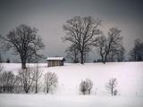 Sheila Haddad - Winter Scene, Hill and Trees, Hut and Foreboding Sky - Fotografik Baskı