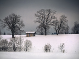 Winter Scene, Hill and Trees, Hut and Foreboding Sky Photographic Print by Sheila Haddad