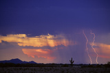 Lightning in a Rain Curtain at Sunset, Sonoran Desert, Tucson, Arizona Photographic Print by Thomas Wiewandt
