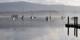 Canada, B.C, Vancouver Island. Boats at Anchor on Cowichan Bay Photographic Print by Kevin Oke