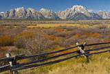 Fall Color, Buck and Rail Fence, Grand Tetons, Grand Teton National Park, Wyoming Photographic Print by Michel Hersen