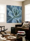 Sweet Succulent Art by Karen Ussery