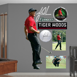 Tiger Woods - Sunday Wall Decal
