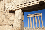 Baalbek Ruins Photographic Print by  benkrut