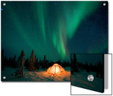 Northern Lights or Aurora Borealis over Illuminated Tent, Boreal Forest, North America Prints by Matthias Breiter/Minden Pictures